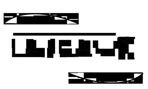 Società cooperativa sociale Lascaux ONLUS